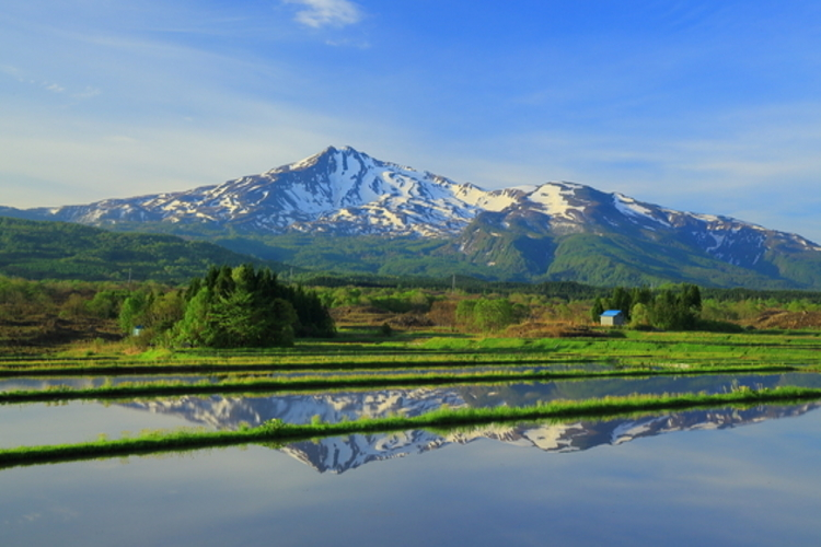 秋田県にかほ市のふるさと納税返礼品で海と山の幸を楽しもう!