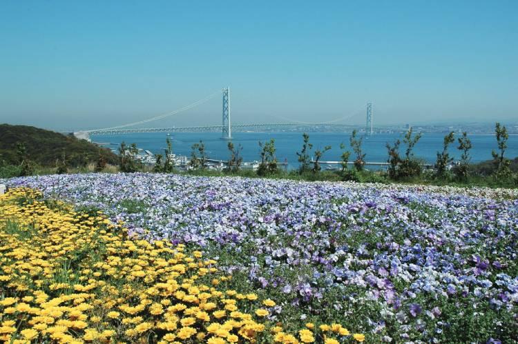 兵庫県淡路市のふるさと納税を紹介!海と大地の恵みが豊富な食の宝庫