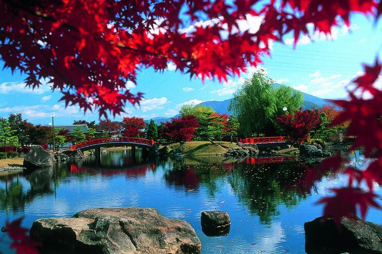 福井県越前市は歴史と文化を誇る町!返礼品で伝統工芸品を楽しもう