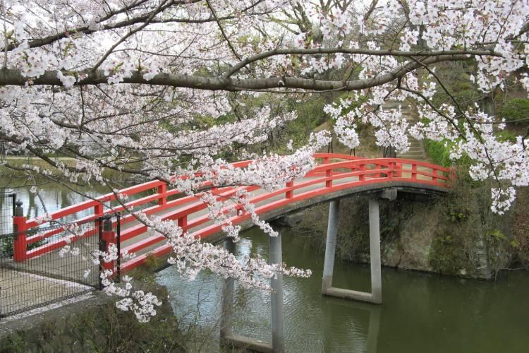 大阪府貝塚市は歴史と情緒漂うまち!地元ならではの返礼品を紹介