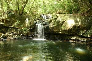 男淵・女淵の滝