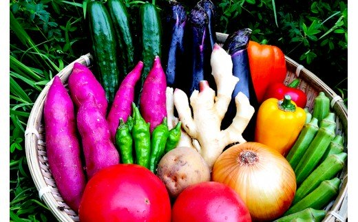 野菜詰め合わせ