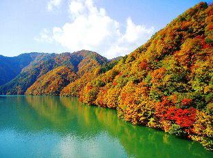 天竜川の紅葉