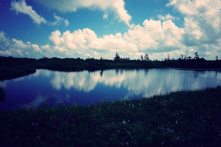 ピヤシリ湿原